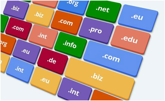 Domain Name Security