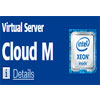 Cloud M Virtual Server plan