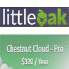 Chestnut Cloud - Pro